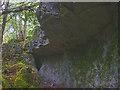SD4880 : Haverbrack Bank Slip Cave by Karl and Ali