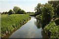 SK8444 : River Witham by Richard Croft