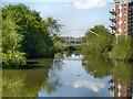 SE2933 : River Aire, Whitehall Bridge by David Dixon