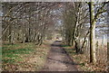 TR0551 : North Downs Way, King's Wood by N Chadwick