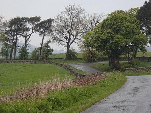 Lane near Bank Top