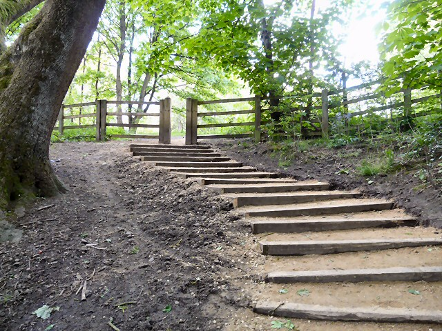 Steps out of Gower Hey Woods