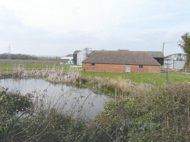 Pond and outbuildings, Mascalls Court Farm