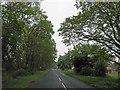 SE9206 : Holme Lane by Steve  Fareham