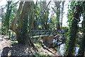 TQ5472 : Footbridge, River darent by N Chadwick