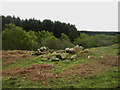 NU1125 : Pile of stones on rough grassland near Three Burns Ford by Graham Robson