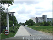 TQ3783 : Greenway near the Olympic Park by Malc McDonald
