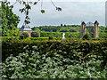 TL2308 : Garden, Hatfield House, Hertfordshire by Christine Matthews
