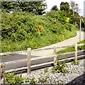 SJ8293 : Fallowfield Loop by Gerald England
