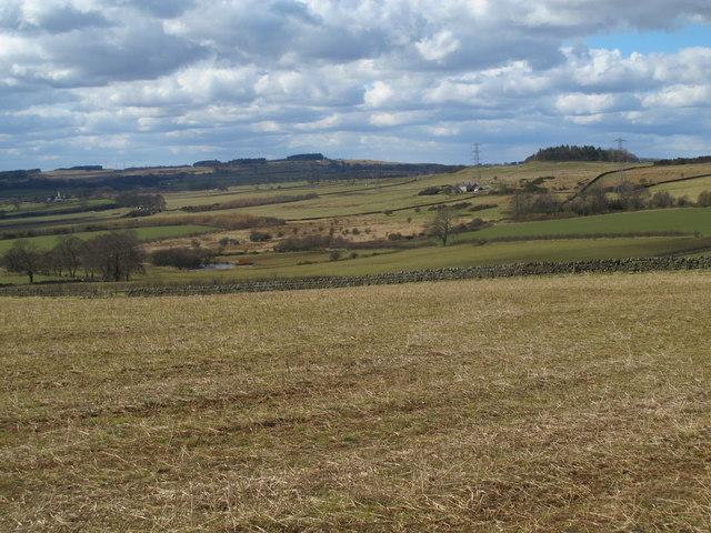 Farmland southeast of Carr Houses