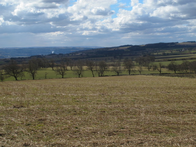 Farmland southeast of Carr Houses (2)