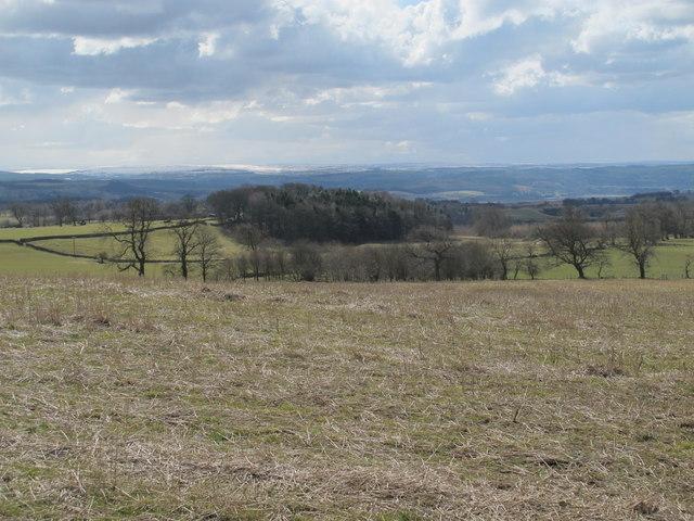 Farmland and woodland northeast of White House