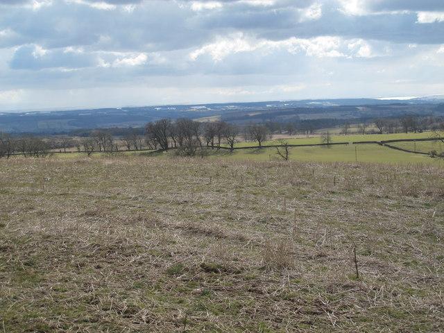 Farmland west of Greenleighton