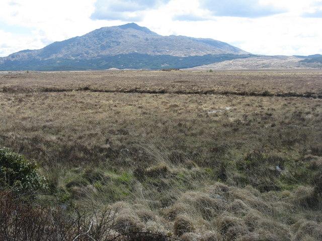 Moorland by Cruach an t-Aon Bhlair