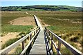 SJ0884 : Boardwalk through the Nature Reserve by Jeff Buck