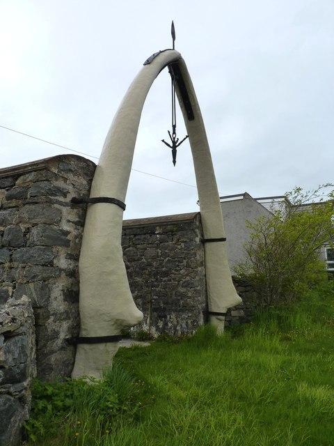 Blue whale's jawbone