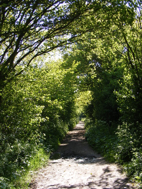 Wood Lane Byway to the B1126 Wangford Road