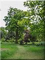 TL2308 : Wildflower Garden, Hatfield House, Hertfordshire by Christine Matthews