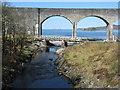 NM7284 : Wooden bridge and railway viaduct by M J Richardson