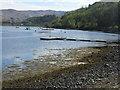 NM7581 : Fish farming at Inverailort by M J Richardson