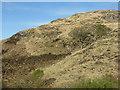 NM7582 : Hillside at Polnish by M J Richardson
