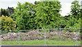 J3874 : Pirrie House site, Belfast (2013) by Albert Bridge
