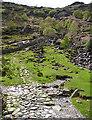 NY2312 : Sourmilk Gill Path by Anne Burgess
