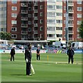 TQ2905 : The County Ground, Hove: pre-match practice by John Sutton