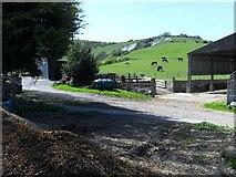 TQ5802 : Chalk Farm, Willingdon, East Sussex by nick macneill