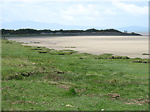 NY2162 : The shore just west of Bowness-on-Solway by David Purchase