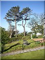 NX0054 : Front garden, Dunskey Guest House by Stanley Howe