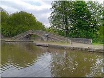 SJ9398 : Footbridge at Dukinfield Junction by David Dixon