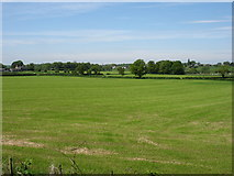 NY4257 : Fields south-west of Linstock by David Purchase
