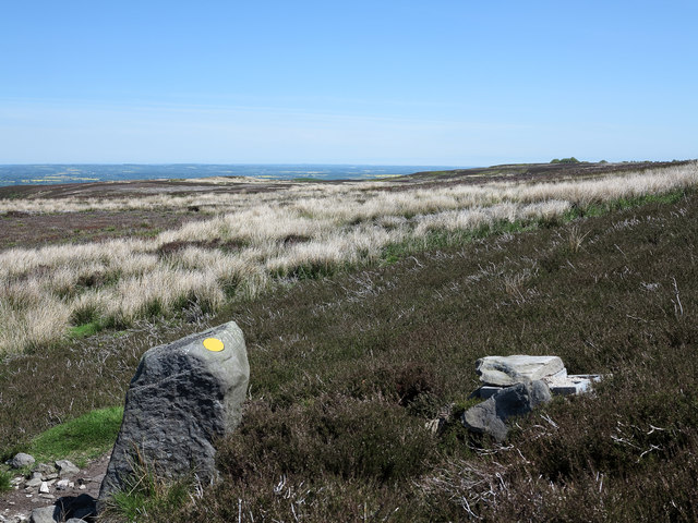 Stone with waymark on Barningham Moor