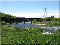 NY3856 : The River Eden below Carlisle by David Purchase