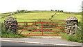 J4177 : Gate and posts near Holywood by Albert Bridge