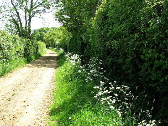 Track past Gillingham Thicks