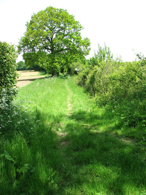 Footpath to Bull's Green