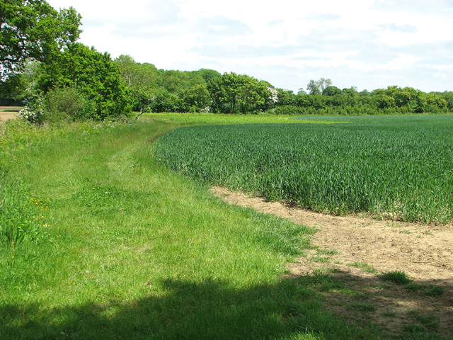 Fields north of Boot's Lane