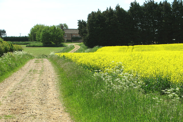 Track to Windle Hill Farm