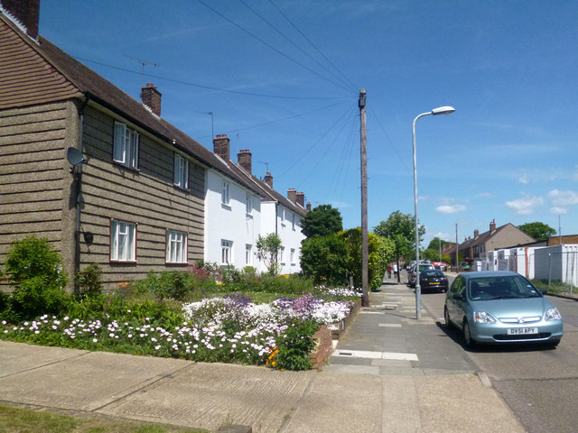 Flowers in Newmarket Way