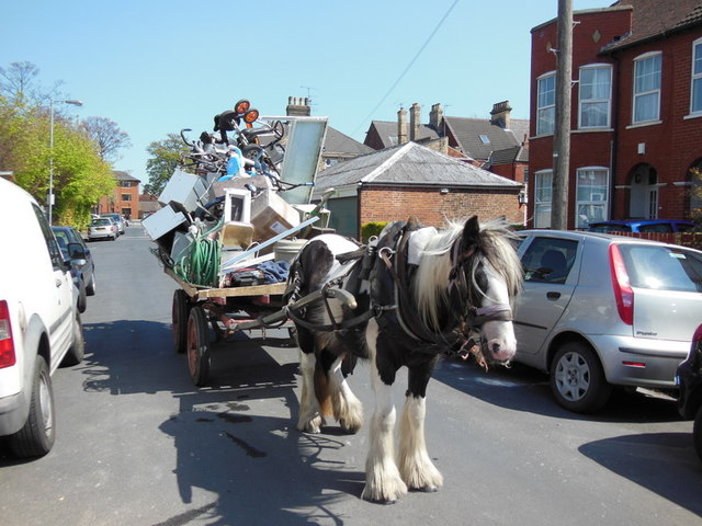 A rag and bone cart on Beech Grove, Hull