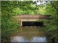 TQ0664 : Bridge over The Bourne by Derek Harper