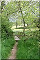 SY3895 : Ditch footbridge by John Myers