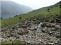 NY1506 : Path above Wastwater by David Brown