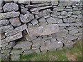 NY9936 : Benchmark on a Dry Stone Wall by Mick Garratt