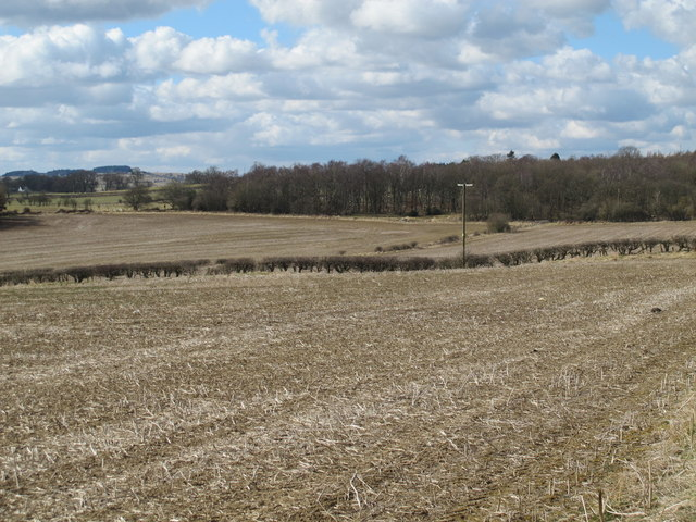 Farmland southeast of Greenleighton and Black Plantation