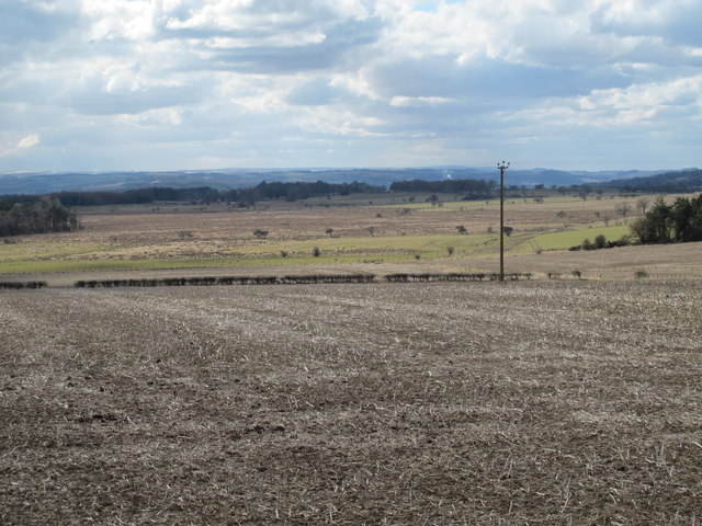 Farmland north of Newton Fell House