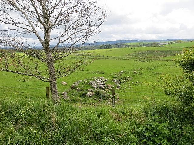 Ruined dyke, Prendwick