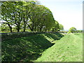 NY9469 : The Hadrian's Wall Path beside the Ditch (2) by David Purchase